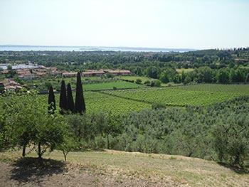 Colline Moreniche