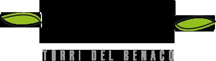 logo-trattoria-agli-olivi
