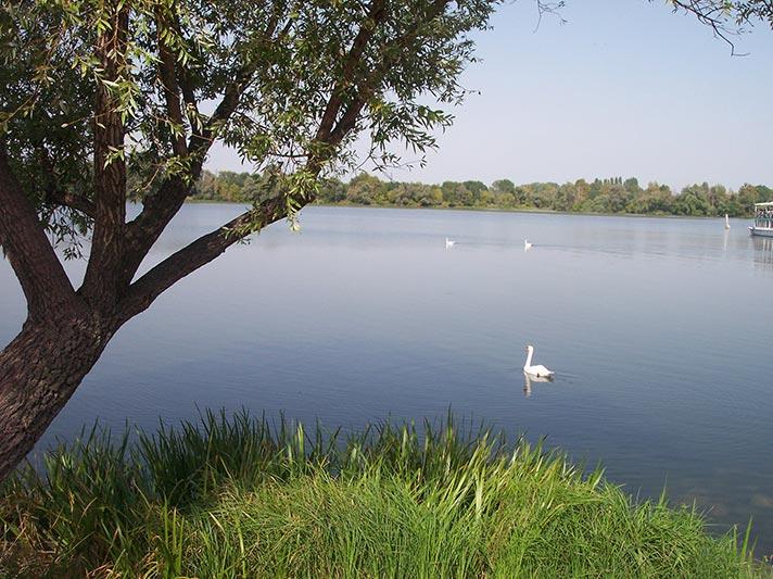Mincio Regional Park Il Garda Online