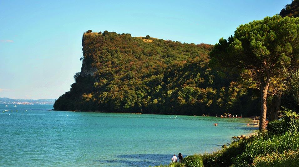 Piante Mediterranee Selvatiche : La rocca di manerba il garda online