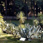 arboretum-002