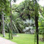 arboretum-005