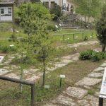 orto-botanico-novezzina-002