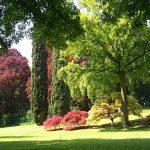 parco-giardino-sigurta-008